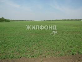 Продается участок Центральная ул, 2000  сот., 950000 рублей