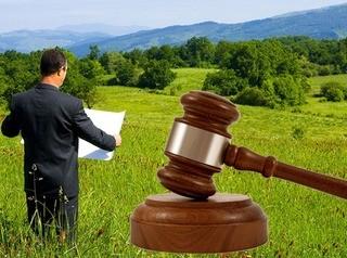 Госкомпания «ДОМ.РФ» выставит на торги два земельных участка в Красноярске