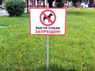 Проблему мест для выгула собак в Улан-Удэ решат комплексно