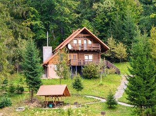 Как действует закон о «лесной амнистии» на примере частного случая