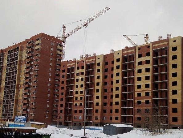 Фото Жилой комплекс ЭВЕРЕСТ, Пролетарская 271/4, Фото январь 2019