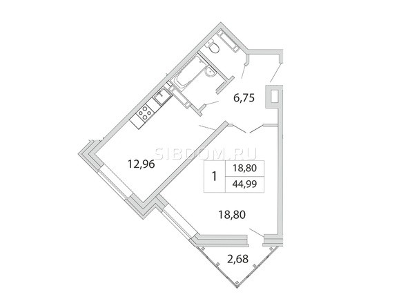 Планировка 1-комн 44,99 м²