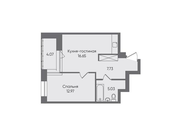 Планировки Жилой комплекс НОВЫЕ ГОРИЗОНТЫ, б/с 1 - Планировка двухкомнатной квартиры 46,45 кв.м