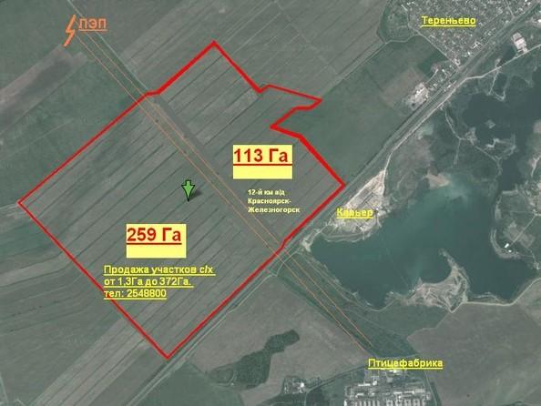 Продам  земельный участок, 30000 соток, Березовка. Фото 3.
