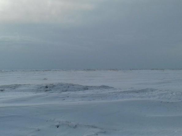 Продам  земельный участок, 6300 соток, Барнаул. Фото 2.
