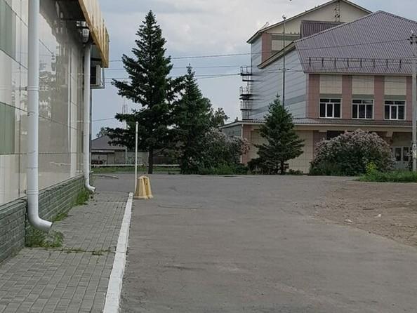 Продам  земельный участок, 550 соток, Павловск. Фото 1.