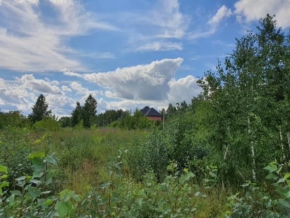 Продам  земельный участок, 750 соток, Барнаул. Фото 5.