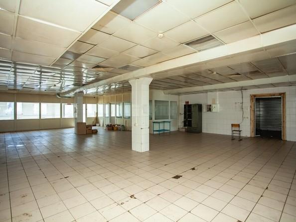 Сдам помещение под общепит, 500 м², П.С.Кулагина ул, 26В. Фото 4.