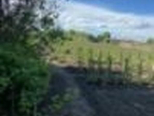 Продам дом, 61 м², Шелаболиха. Фото 29.
