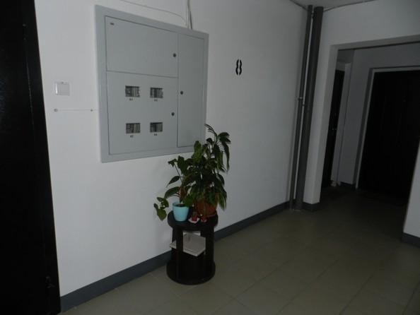 Продам 3-комнатную, 61 м2, Павловский тракт, 305. Фото 23.