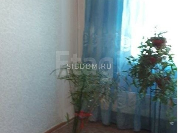 Продам 3-комнатную, 67 м2, Ринчино ул, 9. Фото 4.