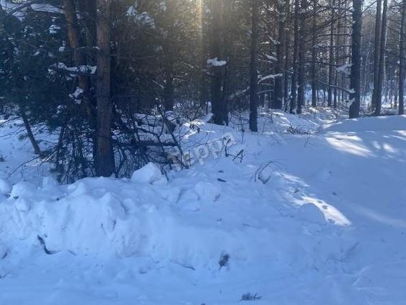 Продам  земельный участок, 900 соток, Гремячинск. Фото 1.
