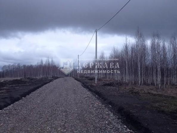 Продам  землю сельхозназначения, 10 соток, Александровка. Фото 2.