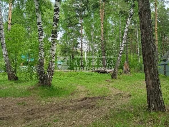 Продам  участок ИЖС, 15 соток, Елыкаево. Фото 2.