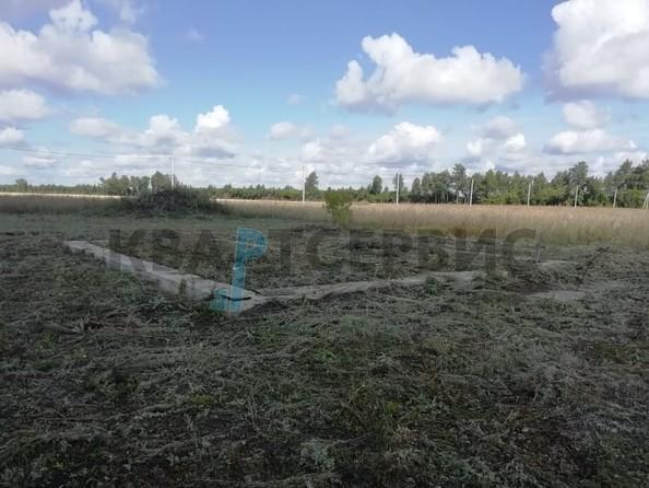 Продам  земельный участок, 1000 соток, Ракитинка (Морозовского с/п). Фото 3.