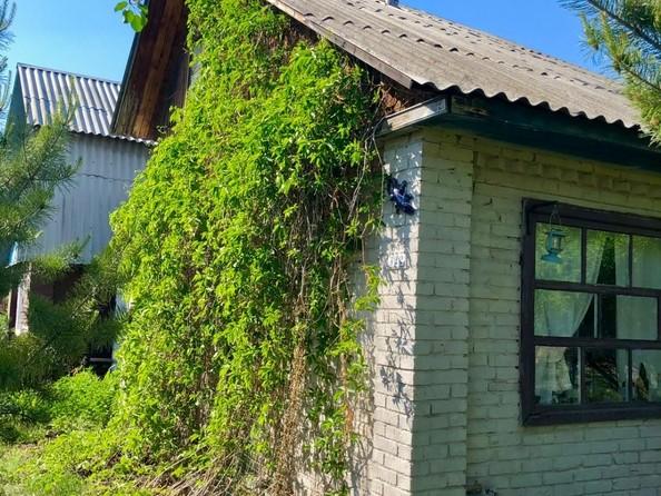 Продам дачу, 5 соток, сдт Птицевод-3 (ЛАО). Фото 5.